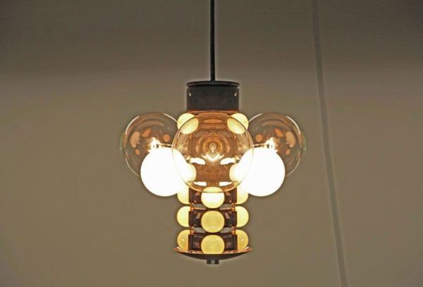 endangered species lamp