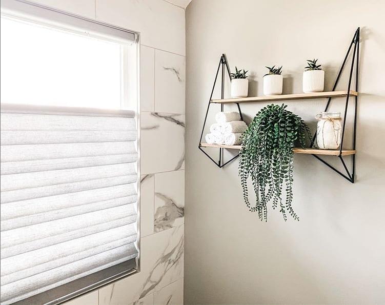 bathroom plants shelf
