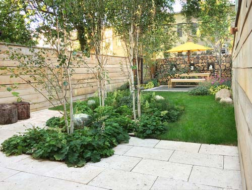 modern urban backyard with trees and greenery